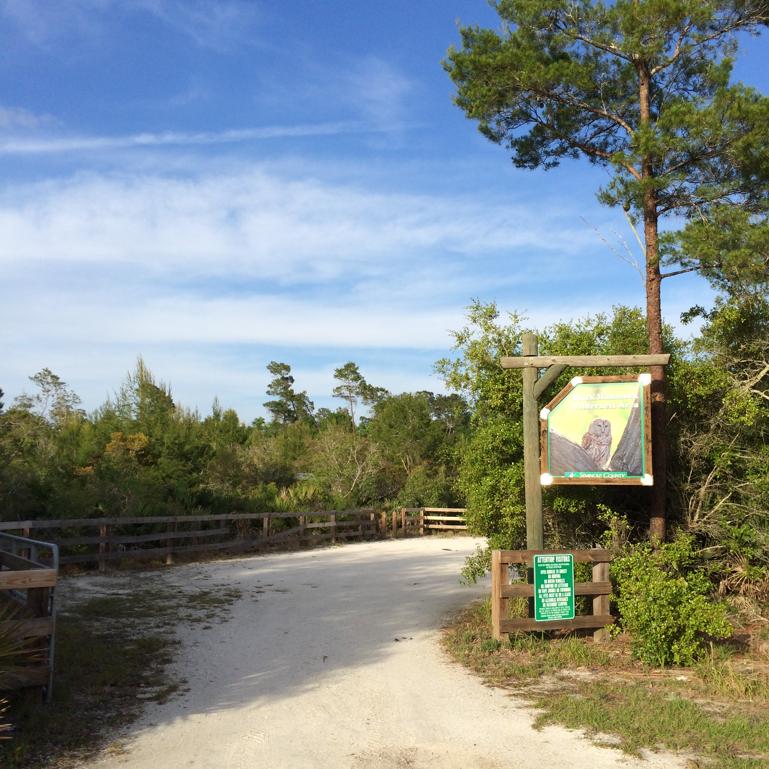 i got to the trail around 4 30 pm and took a look at the trail head map  looked like a simple loop with lots of different scenic areas  hiking black hammock wilderness florida   kylediditagain  rh   kylediditagain wordpress